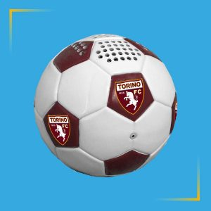 Speaker Bluetooth Football torino